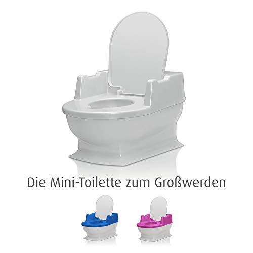 SitzFritz Kinder-Toilette, Töpfchen und...