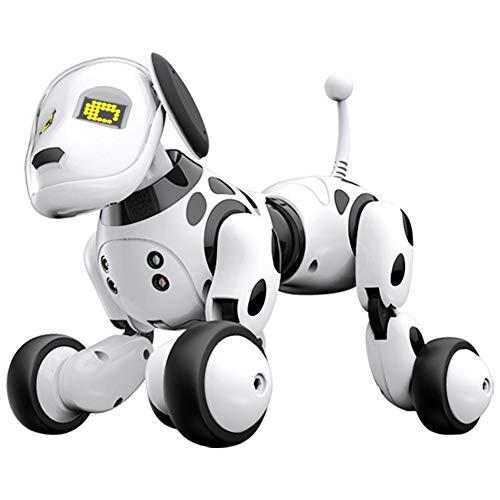 robot hund test test. Black Bedroom Furniture Sets. Home Design Ideas