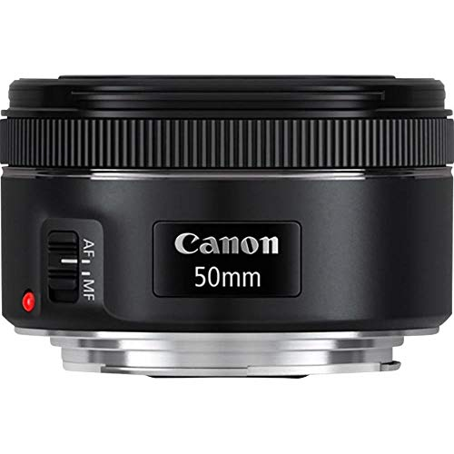 Canon Objektiv EF 50 mm Brennweite F1.8 STM...