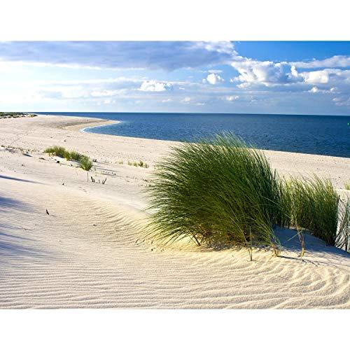 Fototapeten Strand Meer 352 x 250 cm Vlies Wand...