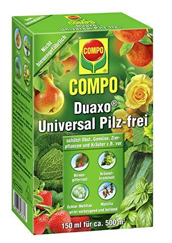 COMPO Duaxo Universal Pilz-frei, Bekämpfung von...