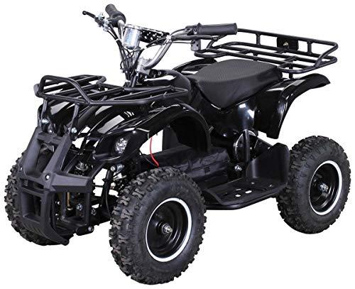 Elektro Kinder Miniquad TORINO 800 Watt ATV Pocket...